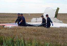 Hai phe Ukraine nhất trí đưa thi thể nạn nhân MH17 khỏi hiện trường