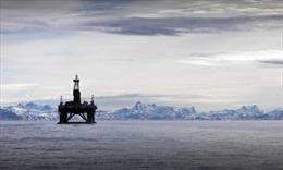 Bắc Cực - 'Mỏ vàng' của nước Nga