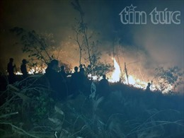 Cháy lớn thiêu rụi 6 hécta rừng