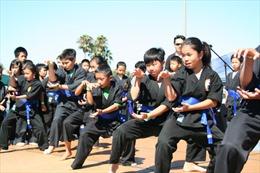 Phát triển và quảng bá võ cổ truyền Việt Nam