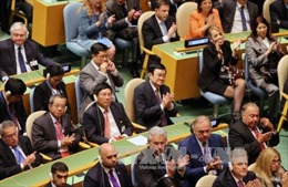 Việt Nam lồng ghép Mục tiêu Phát triển Thiên niên kỷ vào chính sách