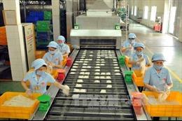 """Triển khai giai đoạn mới Dự án dài hạn """"Nga - Việt Nam: Nền kinh tế mới"""""""