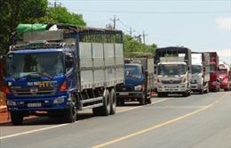 Quốc lộ 14 kẹt xe nhiều giờ do tai nạn liên hoàn