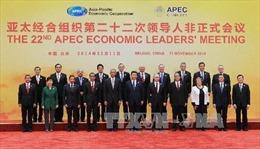 Việt Nam phát huy vai trò tích cực trong APEC