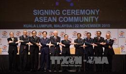Trung Quốc hoan nghênh Cộng đồng ASEAN chính thức thành lập