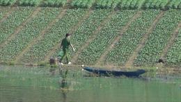 Tạm giữ đối tượng giết người phi tang xác dưới hồ Suối Cam