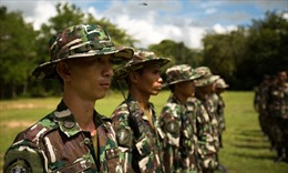 """Chiến tranh """"gỗ máu"""" ở Thái Lan"""