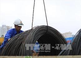 Bộ Tài chính trả lời Bí thư Đinh La Thăng về kiểm tra thép nhập khẩu