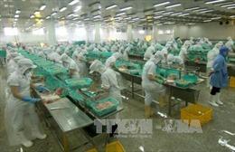 Việt Nam, nền kinh tế mới nổi tăng trưởng nhanh