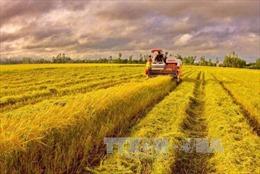 WTO nhấn mạnh Việt Nam đang đi đúng hướng