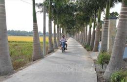 Chung sức xây dựng nông thôn mới: Dồn lực hoàn thành các tiêu chí