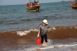 Nước biển Quảng Bình đổi màu bất thường
