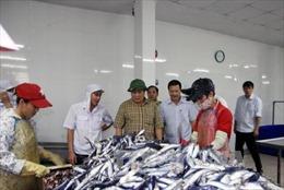 Hỗ trợ người dân thiệt hại do hải sản chết bất thường