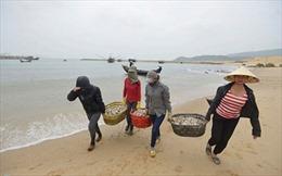 50,8 tỷ đồng hỗ trợ các tỉnh bị hạn mặn và cá chết