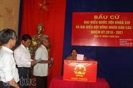 Cử tri giáo dân ở Hà Nội nô nức đi bầu cử