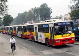 Hà Nội xử phạt hàng chục xe khách giả danh xe buýt