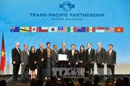 Hội nhập kinh tế quốc tế - cơ hội lớn với Việt Nam