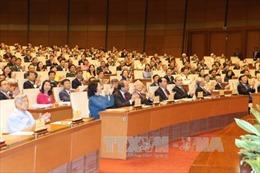 Nhiều vấn đề bức xúc cử tri kiến nghị Quốc hội