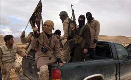 Al-Qaeda hành quyết 14 người thuộc lực lượng chính phủ Syria