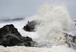 Nhật Bản chuẩn bị đối phó hai cơn bão mới