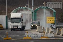 Triều Tiên đặt mìn gần biên giới ngăn binh sĩ đào tẩu sang Hàn