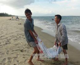 Đà Nẵng hỗ trợ gần 1,9 tỷ đồng cho ngư dân