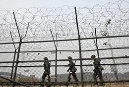 Quan chức tình báo Triều Tiên đào tẩu sang Hàn Quốc