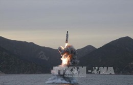 Bất chấp sức ép, Triều Tiên tiếp tục phóng tên lửa