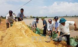 Vỡ đê ngăn mặn ở Quảng Bình do mưa lũ