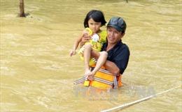 Quảng Trị: Lũ về, dân không kịp trở tay, nhà chìm trong hàng mét nước
