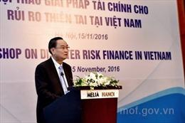 Giải pháp tài chính cho rủi ro thiên tai tại Việt Nam