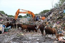 Ô nhiễm nặng từ bãi rác quá tải