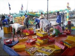 Hỗ trợ cho tổ hợp tác khai thác hải sản xa bờ