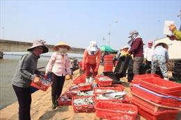 Tiền Giang hỗ trợ ngư dân bám biển