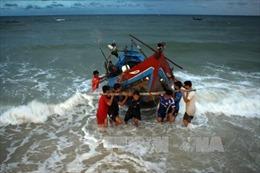 Xử lý hải sản tồn kho sau sự cố môi trường biển