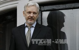 """""""Cha đẻ"""" Wikileaks có thể đòi Anh, Thụy Điển bồi thường"""