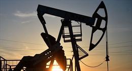 EU nới lỏng lệnh cấm bán các sản phẩm dầu sang Syria