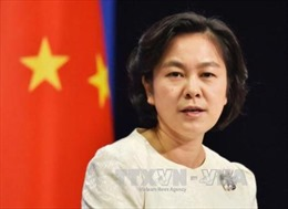 Trung Quốc lên tiếng sau khi Anh, Pháp soạn thảo nghị quyết về vũ khí hóa học Syria