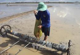 Vận hành hồ, xả nước cho hạ du chưa đem lại hiệu quả chống hạn