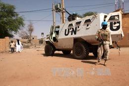Đức điều thêm quân và trực thăng tới Mali