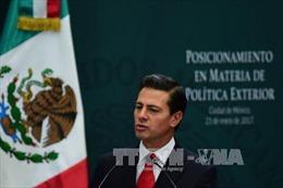 Mexico tuyên bố không trả tiền xây tường biên giới của ông Trump