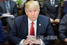 Đa số dân Mỹ không hài lòng với cách điều hành của ông Trump