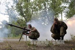 Tổng thống Mỹ sẵn sàng hợp tác giải quyết xung đột tại Đông Ukraine