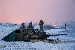 Nga công bố lệnh ngừng bắn tại Ukraine