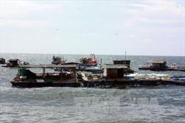 Xã đảo Hòn Nghệ làm giàu từ biển