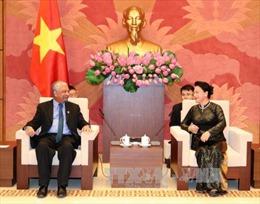 Tăng cường kết nối giữa UNDP với Quốc hội Việt Nam