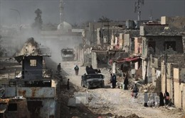 Chiến dịch Mosul vào giai đoạn cuối, IS hoặc đầu hàng hoặc bị tiêu diệt
