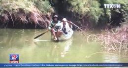 Cá chết hàng loạt ở thượng nguồn sông Sài Gòn