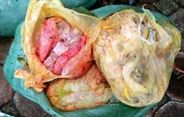 Yên Bái bắt xe chở hàng trăm kg nội tạng động vật