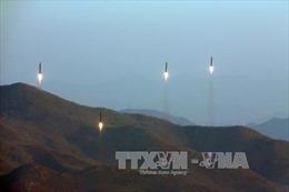 Mỹ bí mật đưa vũ khí chiến lược tới Hàn Quốc